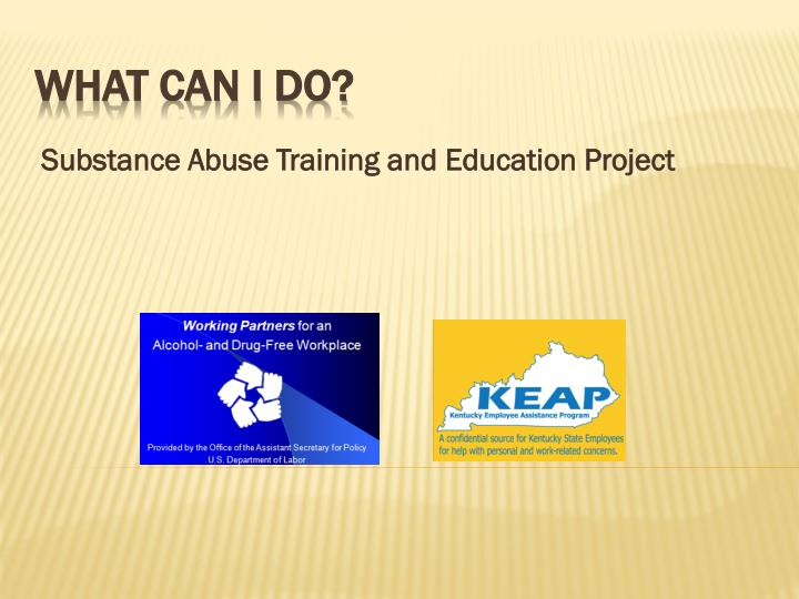 substance abuse training and education project n.