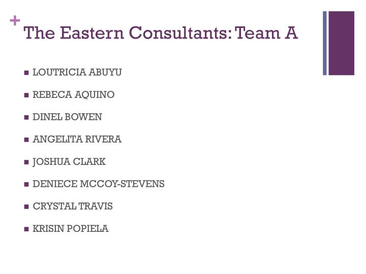 the eastern consultants team a n.