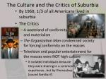 the culture and the critics of suburbia