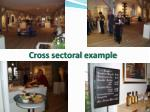 cross sectoral example