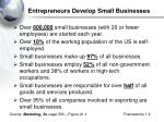 entrepreneurs develop small businesses