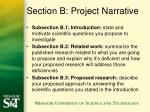 section b project narrative
