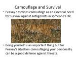 camouflage and survival