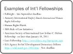 examples of int l fellowships