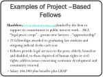 examples of project based fellows