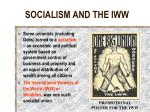 socialism and the iww