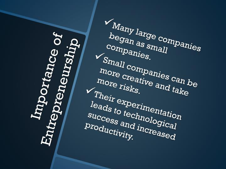 Many large companies began as small companies.