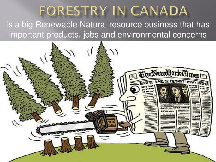 forestry in canada n.