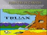 forestry in canada6