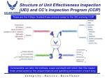 structure of unit effectiveness inspection uei and cc s inspection program ccip