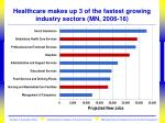 healthcare makes up 3 of the fastest growing industry sectors mn 2006 16