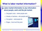 what is labor market information