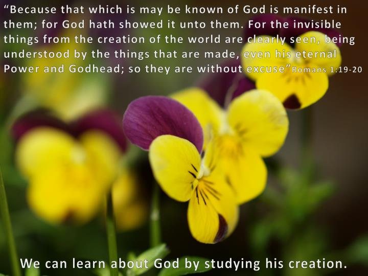 """""""Because that which is may be known of God is manifest in"""