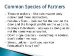 common species of partners