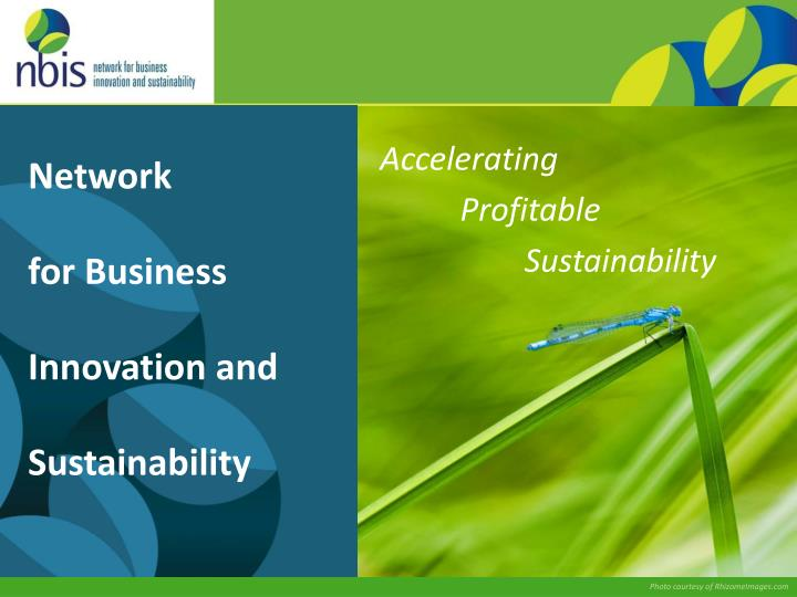 network for business innovation and sustainability n.