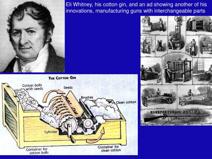 Eli Whitney, his cotton gin, and an ad showing another of his innovations, manufacturing guns with interchangeable parts