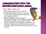 communicating with the beaver compliance animal