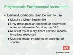programmatic environmental assessment