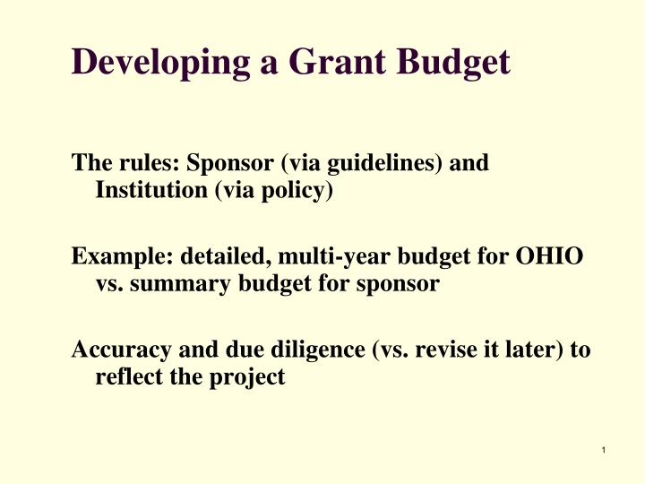 developing a grant budget n.