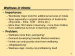 wellness in hotels