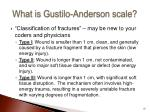 what is gustilo anderson scale