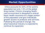 market opportunities2