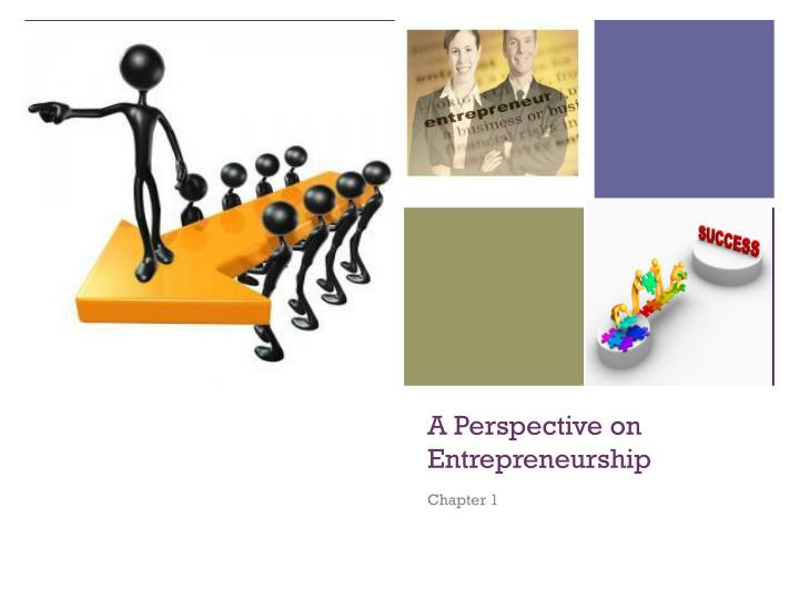 a perspective on entrepreneurship n.