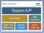what is taxport a p