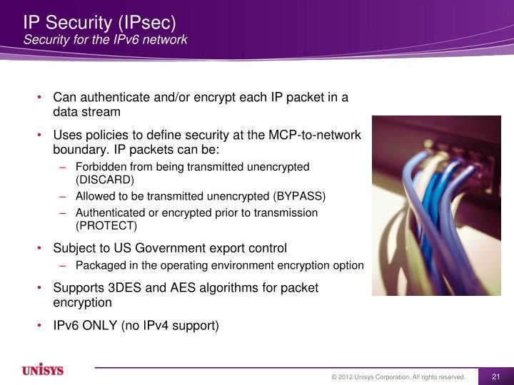 IP Security (IPsec)