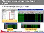file structure and memory layout exploit