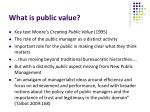 what is public value