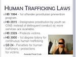 human trafficking laws