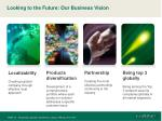 looking to the future our business vision