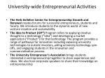 university wide entrepreneurial activities1