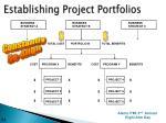 establishing project portfolios1