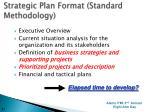 strategic plan format standard methodology
