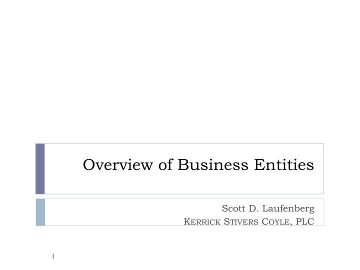 overview of business entities n.