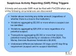 red f suspicious activity reporting sar filing triggers lags for suspicious activity