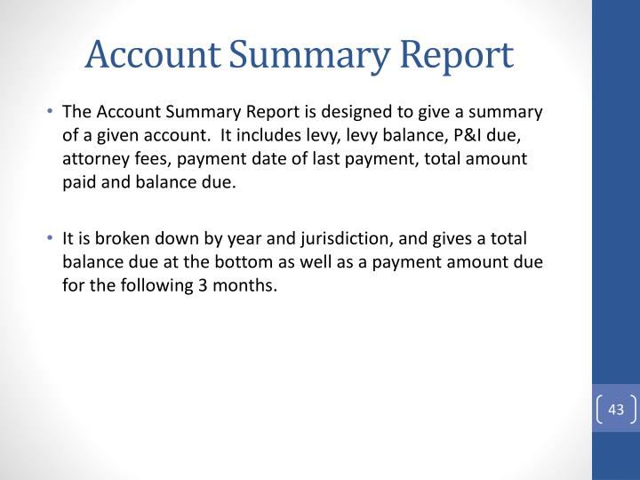 Account Summary Report