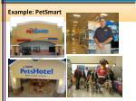 example petsmart