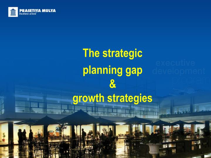 the strategic planning gap growth strategies n.