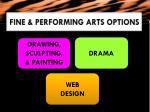 fine performing arts options