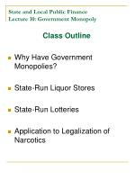 state and local public finance lecture 10 government monopoly