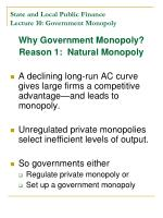 state and local public finance lecture 10 government monopoly1