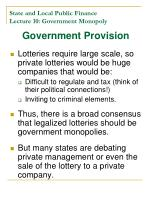 state and local public finance lecture 10 government monopoly11