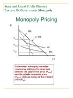 state and local public finance lecture 10 government monopoly2