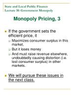 state and local public finance lecture 10 government monopoly4