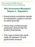 state and local public finance lecture 10 government monopoly5