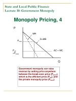 state and local public finance lecture 10 government monopoly6