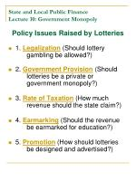 state and local public finance lecture 10 government monopoly9